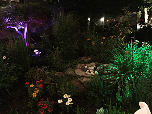 Outdoor Uplighting Rental
